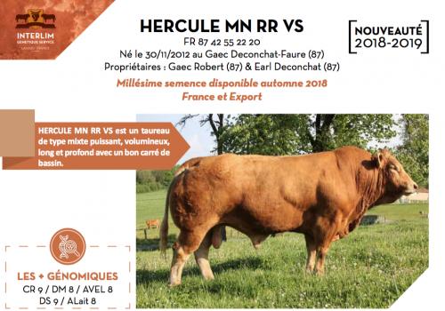 HERCULE MN RR VS