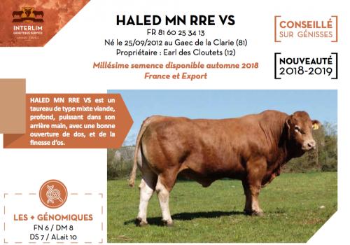 HALED MN RRE VS