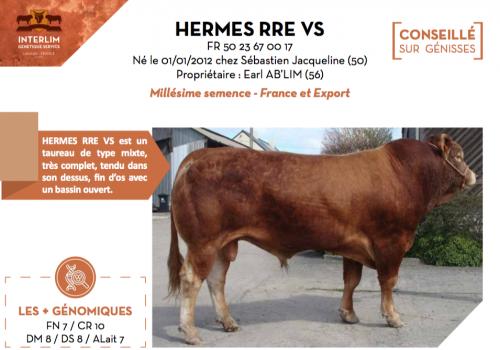 HERMES RRE VS