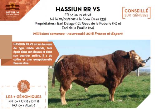 HASSIUN RR VS