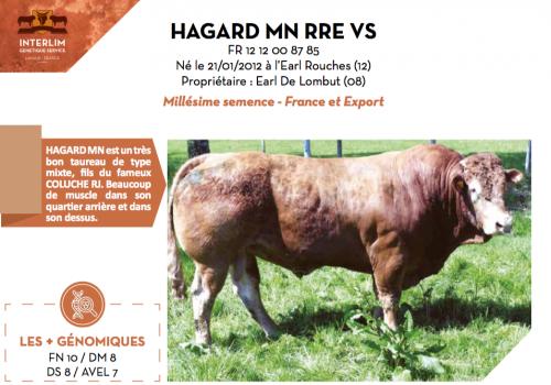 HAGARD MN RRE VS
