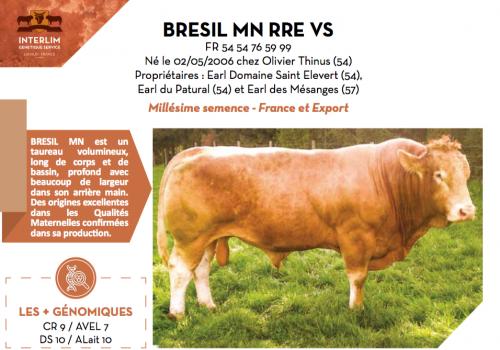 BRESIL MN RRE VS